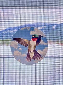 Retractable Screen Door Decals  Stickers  - 6 per Package - Keep Children Safe - Alert Birds Dogs Kids - Warn Protect Window Safety - Hummingbird Set