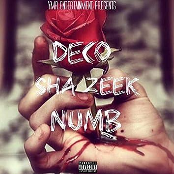 Numb (feat. Sha Zeek)