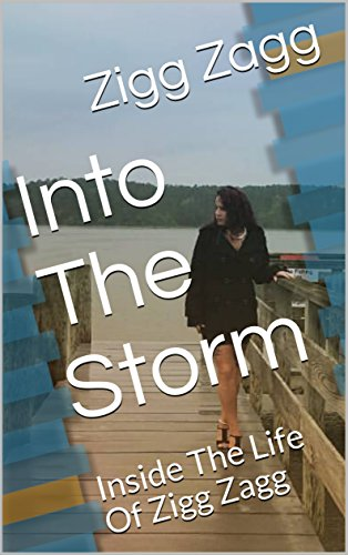Into The Storm: Inside The Life Of Zigg Zagg (English Edition)