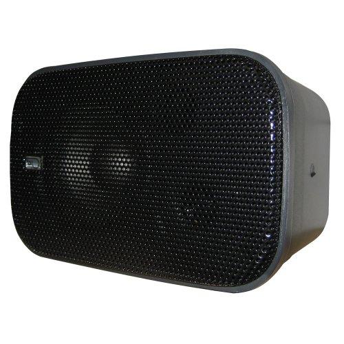 PolyPlanar Compact Box Speaker Pair Black
