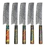 Hajegato Cuchillo de Chef Damasco Mango Profesional único, Cuchillo de Cocina japonés Vg10, 67 Capas de Acero de Damasco con Funda