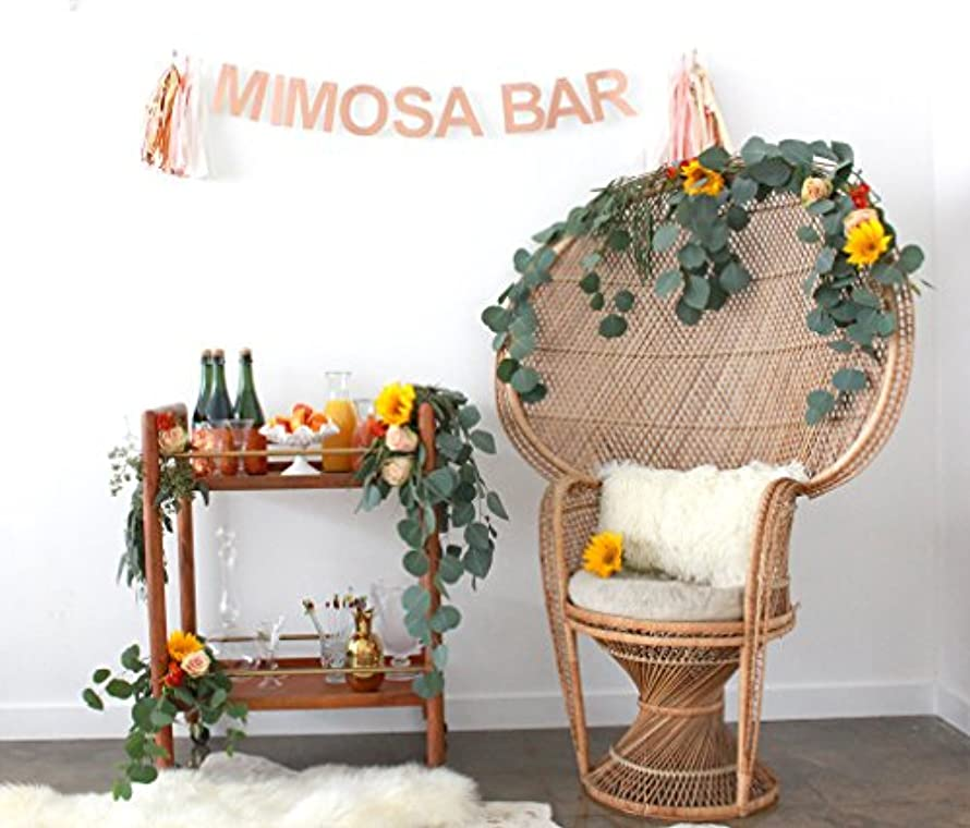 MIMOSA BAR CELEBRATION BANNER by POSHAHOOLIE for bridal shower decorations, birthday party decorations, bachelorette party decorations, graduation party decorations, and more