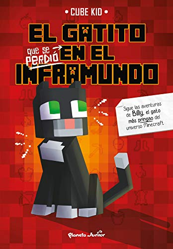 libros de minecraft en internet