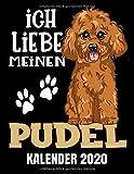 Ich Liebe Meinen Pudel Kalender 2020: Pudel Hunde Kalender Terminplaner Buch - Jahreskalender - Wochenkalender - Jahresplaner