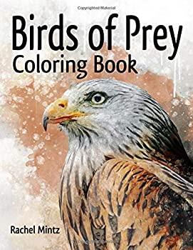 Birds of Prey Coloring Book  Eagles Hawks Falcons Patriotic Bald Eagle Realistic & Tattoo Designs