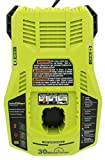 Ryobi P117 One+ 18 Volt Dual Chemistry IntelliPort Lithium Ion and NiCad Battery...