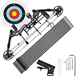 AW 70 Lbs Pro Compound Right Hand Bow Kit Target Practice Hunting Arrow Archery
