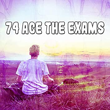 74 Ace the Exams