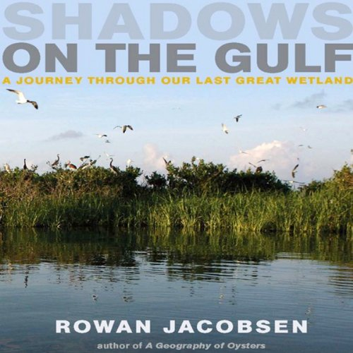 Shadows on the Gulf audiobook cover art