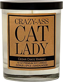 Funny Candles - Crazy Cat Lady,- Candles Gifts for Women Men Cat Moms Cat Lovers Rescue Best Friends Birthday Gifts for Women Friendship Gifts Funny Gifts for Friends Girlfriend Boyfriend