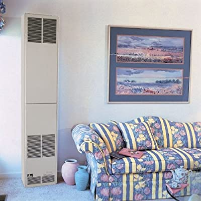 Empire Comfort Systems Counterflow Direct-Vent Wall Furnace with Electronic Pilot Fuel: Liquid Propane