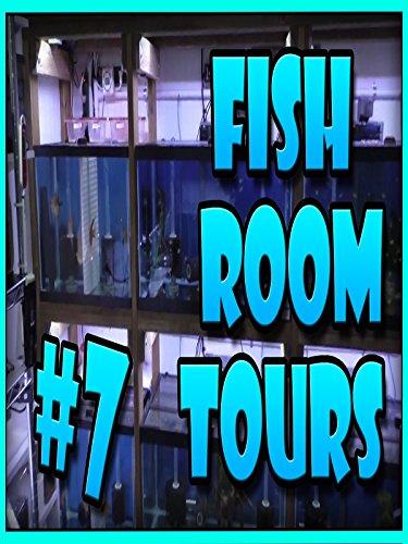 Fish Room Tour #7 Dean breeds Discus, Apistotrammas, Rams and Rare Plecos. Small Fish Room