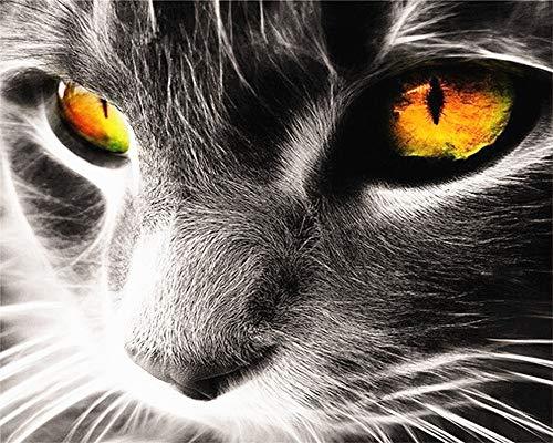 DIY Ölgemälde, Malen nach Zahlen Kit für Kinder Erwachsene Anfänger 40,6x 50,8cm–Cat 's Eye, Zeichnen mit Pinsel Weihnachten Decor Dekorationen Geschenke Frame