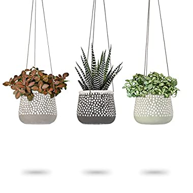 Concrete Hanging Planter | Polka Dot Design Succulent Pots | Round Plant Holder Container | Cactus Pot with Brown Cord Hanger | Indoor Outdoor Decor | 23 Bees (3 Pack x Shades of Nature)