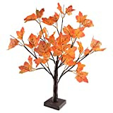 24 LEDs Ahornblatt Baum Licht, 50cm Schreibtisch Ahorn-Blätter (Herbst) Baumlicht Warmweiß,Herbst Dekoration Blätter Lichterketten für Thanksgiving, Weihnachten, Innen Deko - 3