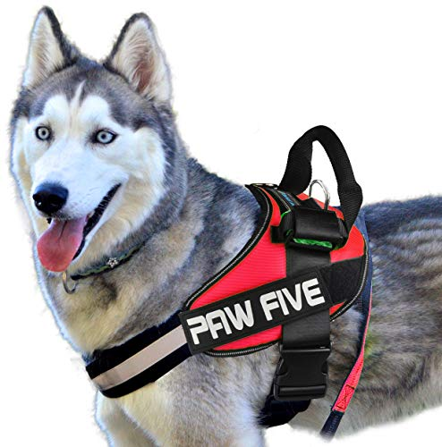 Paw Five CORE-1 Dog Harness, Reflective No-Pull with Built-in Waste Bag Dispenser, Fully Adjustable with Padded Control Handle for Medium and Large Dogs, (Large, Lava Red)