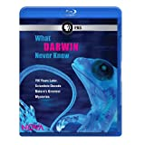 What Darwin Never Knew [Blu-ray]