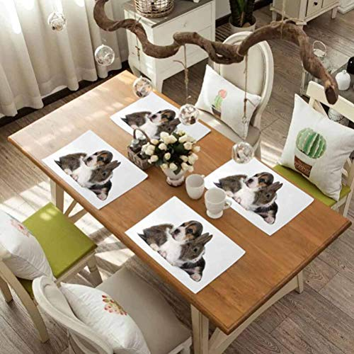 For Tables Heat-insulation Linen Kitchen Dining Pad, Beagle Pets Rabbit and Puppy Animal Kingdom Friendship Best Companions Bunn, Easy to Clean Premium Table Mats for Dining Table, Set Of 8