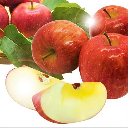 りんご 青森県産 完熟 サンふじりんご 赤秀 ※ ギフト 家庭用 お歳暮 贈答用 のし対応可能 (約3.5キロ) ※野菜ソムリエ監修