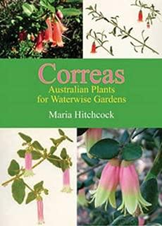 Correas: Australian Plants for Waterwise Gardens