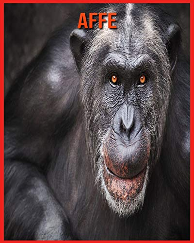Affe: Erstaunliche Fakten & Bilder