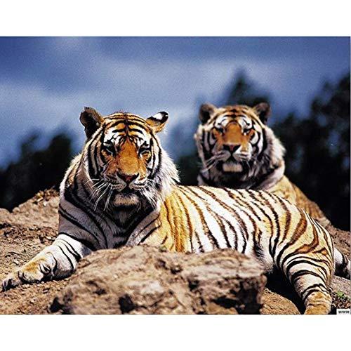 Lazodaer Kits de pintura de diamante 5D para adultos, niños, decoración del hogar, habitación, oficina, regalo para él y ella soleando tigre 15.6 x 11.8 pulgadas