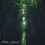 Relic Forest (Pokémon Colosseum)