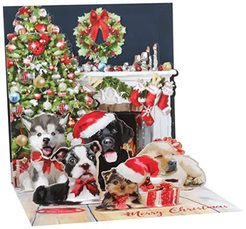 Pop Up 3D Weihnachten Karte PopShot Hunde X-Mas Mütze 13x13 cm