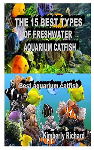 THE 15 BEST TYPES OF FRESHWATER AQUARIUM CATFISH: Best aquarium catfish