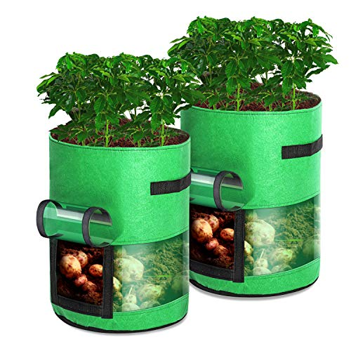 RuizeT Potato Grow Bags Fabric Pots Planting Bags Outdoor//Indoor Vegetables Bags with Handles 10 Gallons Smart Planting Pot 2pack//Green