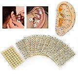 600 semillas de prensa para orejas desechables, haricot de yeso de masaje de acupuntura, vagina,...