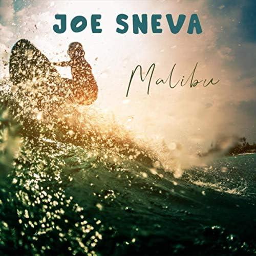 Joe Sneva