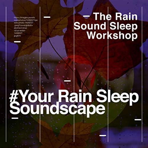The Rain Sound Sleep Workshop
