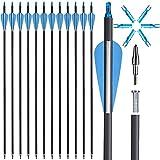 Dardos con plumas de fibra de carbono de 30 pulgadas y 4 pulgadas, con puntas intercambiables para arco recurve y arco compuesto, targeting o caza (12 unidades)