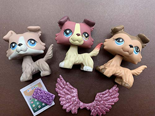 YWH lps Collie 3pcs, lps Collectable Figures 893 1262 67 lps Dogs Different Eyes Collie with lps Accessories Wings Cellphone Kids Gift