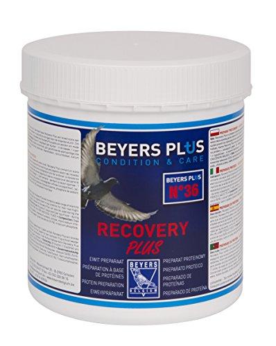 600g Beyers Plus Recovery Plus
