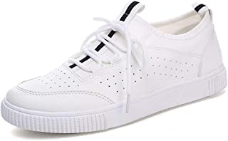 Summer Men's Low-top Shoes Through Punching Fashion Trend Men's Shoes White Shoes Hollow Lazy Shoes Shoes (Color : White, Size : 39)