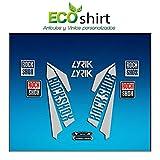 Ecoshirt 3N-D57Z-OA5B Pegatinas Horquilla Fork Rockshox Lyrik 2016 Am40 Stickers Aufkleber Decals Adesivi Bike BTT MTB Cycle, Plata 26' y 27.5'