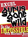Excel Gurus Gone Wild : Do the Impossible with Microsoft Excel