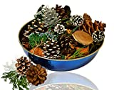 Manu Home Holiday Pine Potpourri in a Beautiful Stainless Steel Blue Bowl ~A Clean Scent of Fresh Forest Pine...