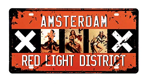 DiiliHiiri Placa De Matrícula Cartel Vintage para Pared de Chapa de Metal Diseño Creativo Decoraciones de Bar Pub Cafetería (Amsterdam)