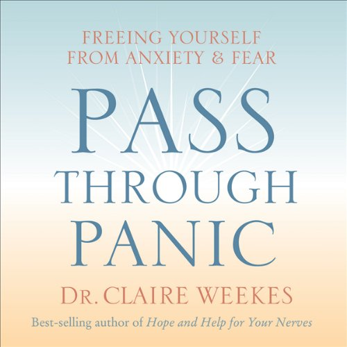 Pass Through Panic audiobook cover art