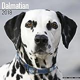 Dalmatian Calendar 2018 (Square)