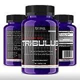 Ultimate Nutrition 100% Bulgarian Tribulus Terrestris Standard - 90...