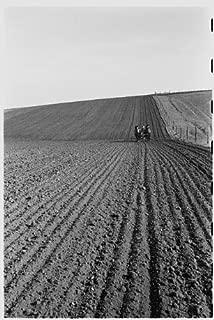 HistoricalFindings Photo: Corn Planting,Jasper County,Iowa,IA,Farm Security Administration,FSA,1940,24