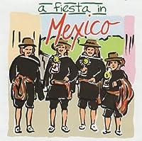 Fiesta in Mexico