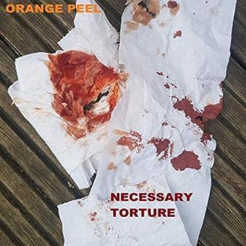 Necessary Torture