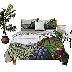 DRAGON VINES 4 Bedding Cover Set Four Set Series Bedding Pillow sham Landscape with Views of Vineyards Grapes Leaves Drink Barrel Agriculture Field Farm Multicolor Solid Color Quilt Cover W80 xL90