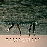 The Great Detachment (Vinyl)