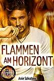 Flammen am Horizont: Behind The Flames 2